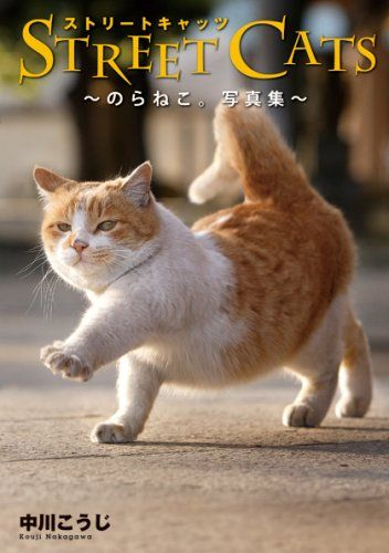 STREET CATS, a photo collection by Koji Nakagawa。写真集- | 中川 こうじ | 本-通販 | Amazon.co.jp