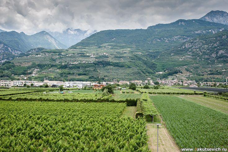 Влюбленные остановились в небольшом городке Арко неподалеку от Рива-дель-Гарда.