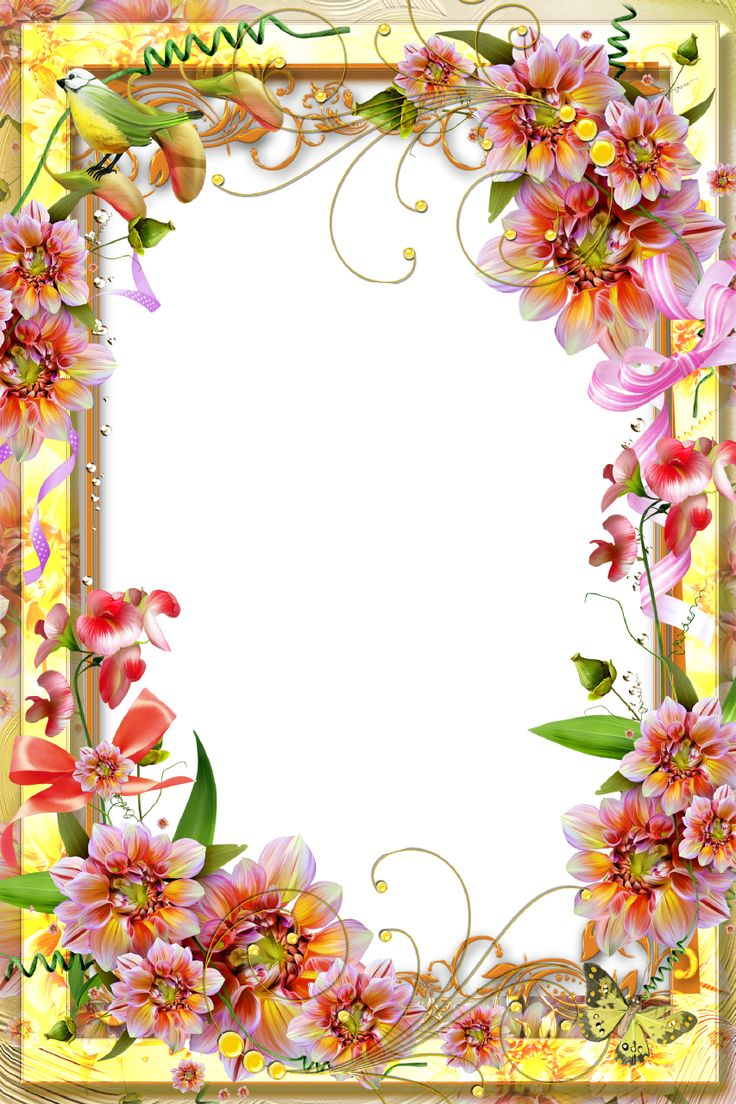 ColorfulFlowersandFloralDecorationPictureFrame.png