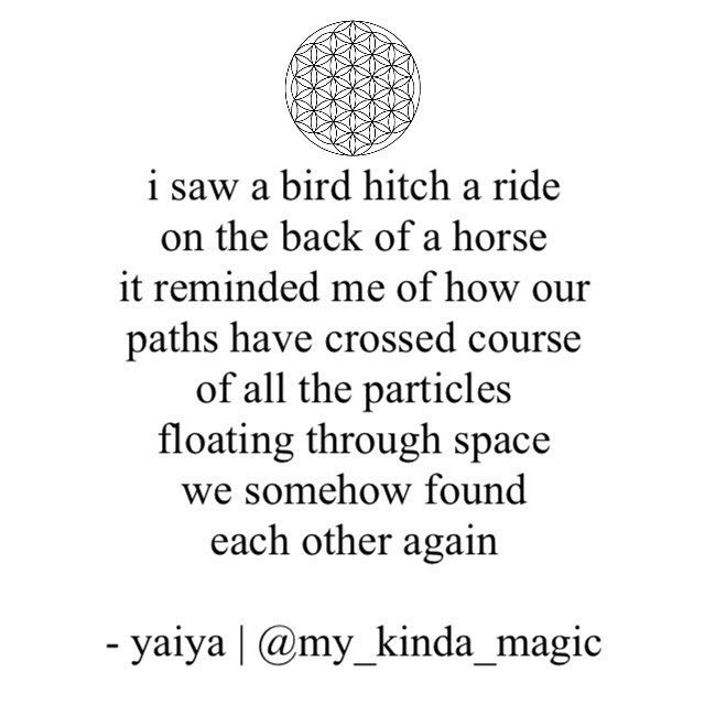 Tag someone who you're grateful for crossing paths with - spread the love, it's the best kinda magic❤️ * * * #mykindamagic #yaiya #poetsofig #poetry #poetsofinstagram #writer #writersofig #writerscommunity #wordporn #wordswithqueens #wordswithkings #universe #instaquote #love #consciousness #selflove #yoga #travel #creativity #wildwoman #instagood #picoftheday #heart #wordsofwomen