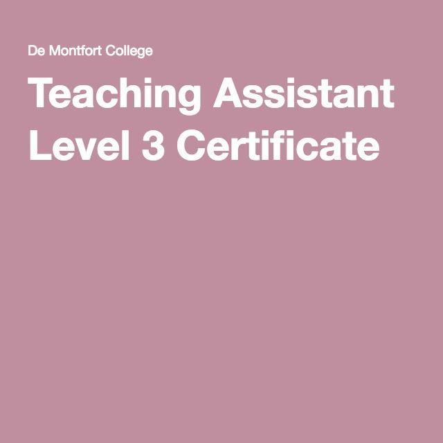 Teaching Assistant Level 3 Certificate