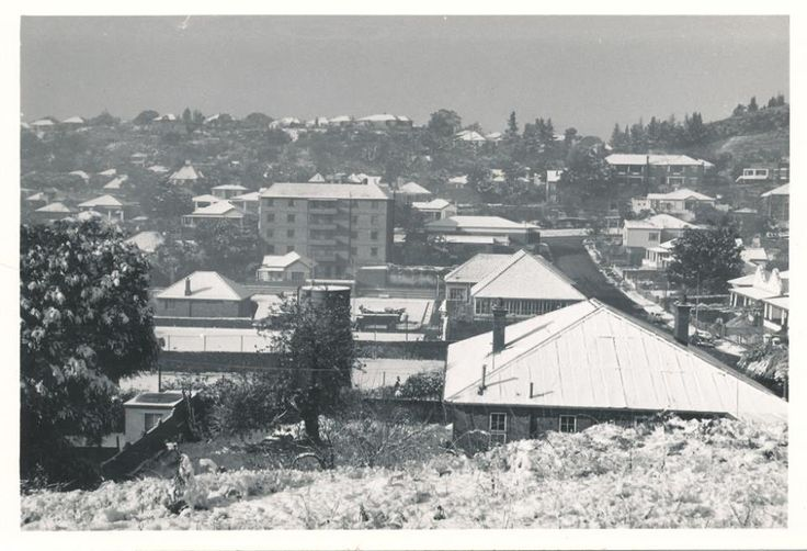 Snow in Johannesburg August 1962 Jackal, Juno Streets, Kensington.