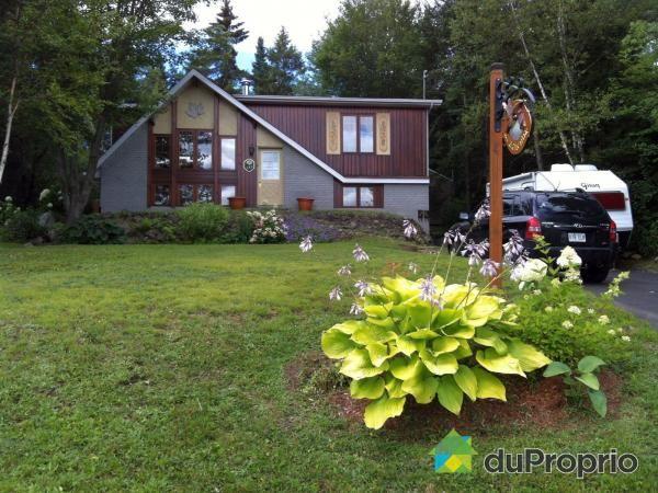 Maison à vendre Ste-Agathe-Des-Monts, 157, rue Marguerite, immobilier Québec | DuProprio | 597613