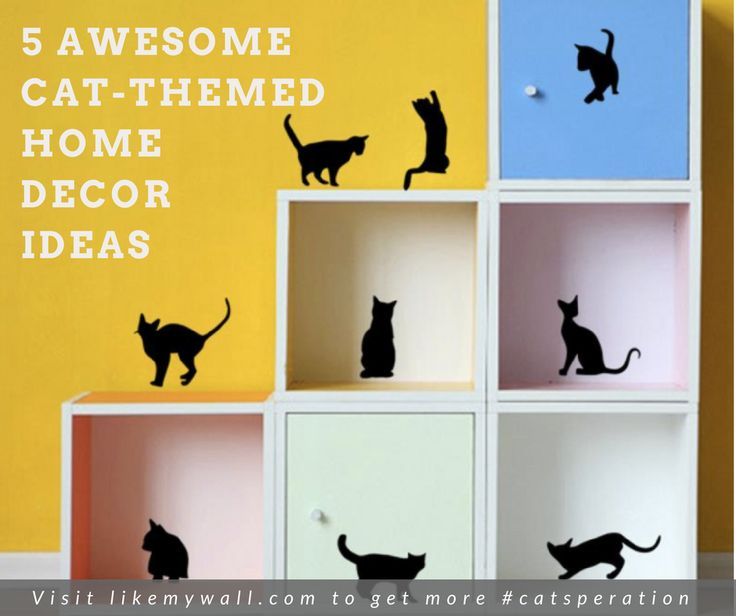 Need some cat-speration in your room? Click here for more ideas!