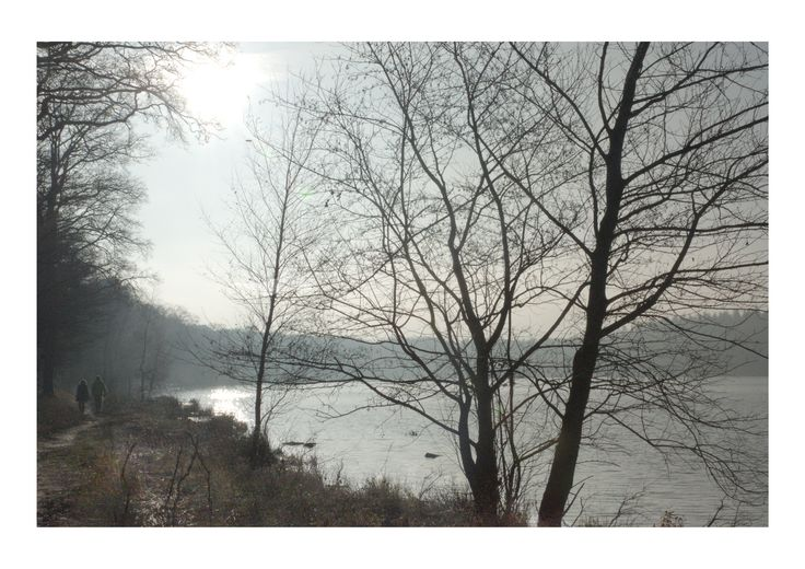 Landscape. Het zwart water in Venlo. The black lake.