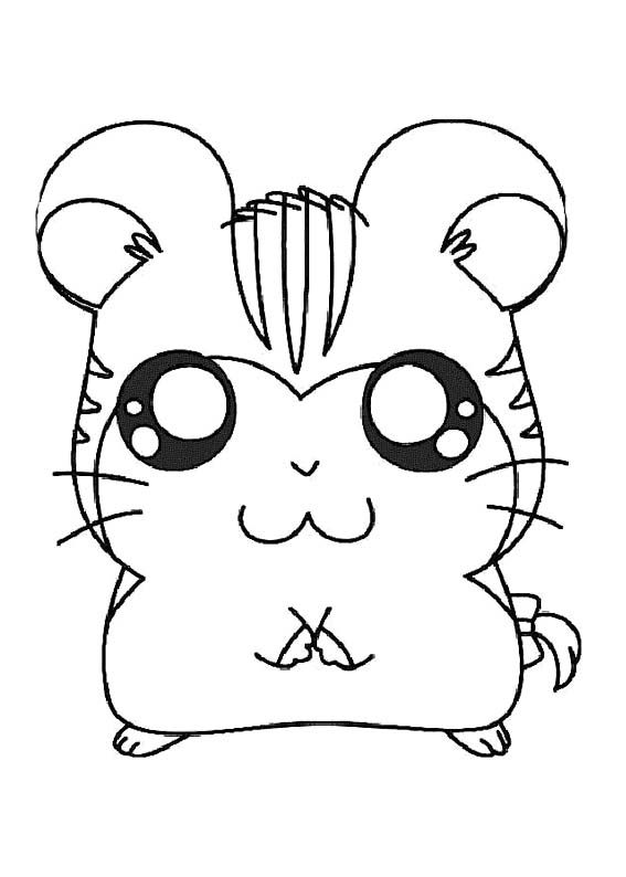 Stan Coloring Page Hamtaro Pinterest Coloring Pages Coloring