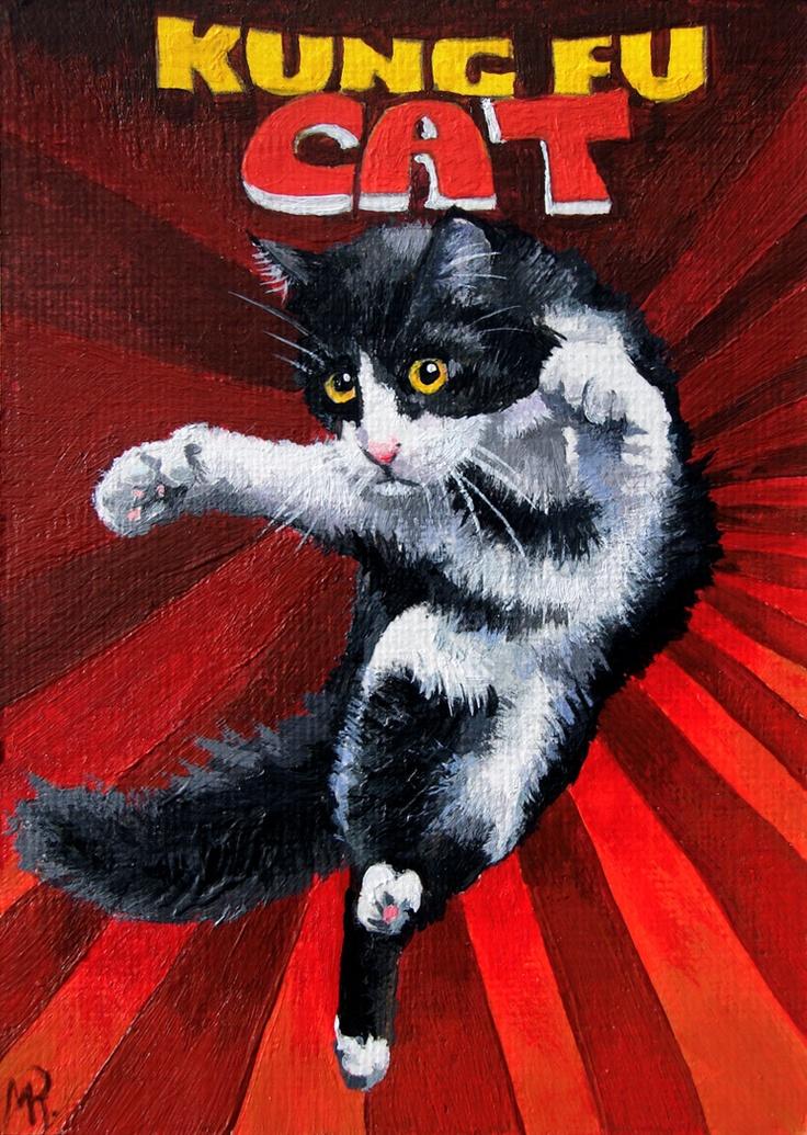 Kung fu cat
