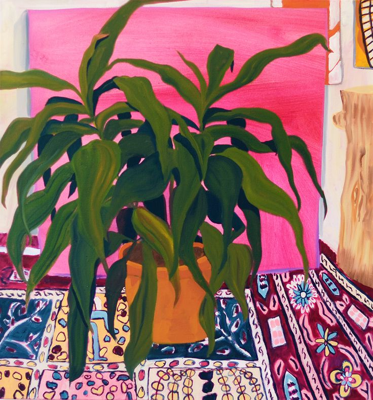 confront:  Anna Valdez, Plants on Pink, 2015Oil on canvas.  via missannavaldez