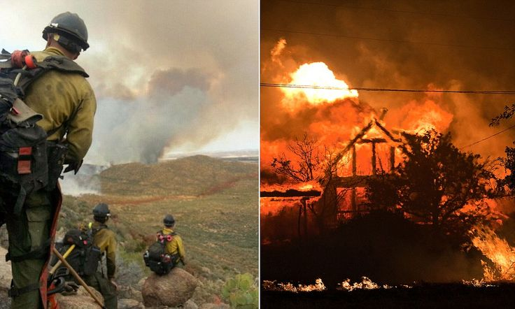 Speculation is growing that the 19 members of the elite Granite Mountain Hotshots battling the Arizona forest fires may have fallen victim to a rare, uncontrollable series of circumstances known as a 'black swan' event.