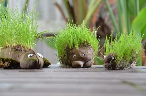 How to make an animal grass heads.  These would be fun to make on the preschool playground!  #playoutdoors