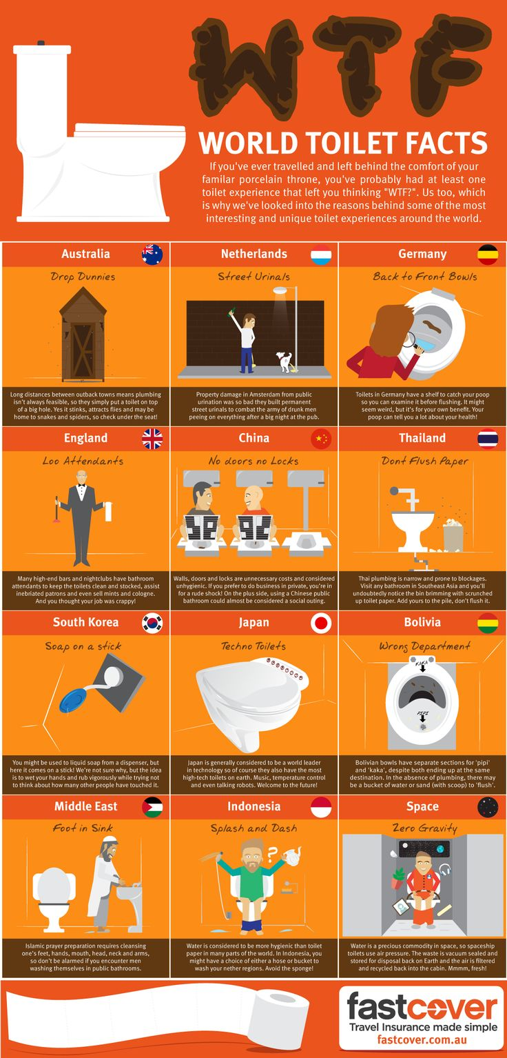 WTF World Toilet Facts