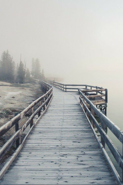 102 best ♒ Foot Bridge & Swinging Bridge images on Pinterest ...