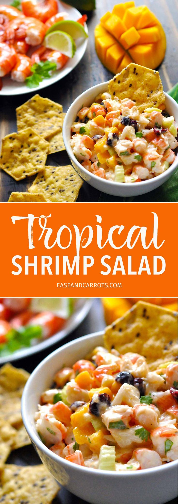 Tropical Shrimp Salad Recipe. This shrimp salad is great for summer with mango and craisins for a fun tropical twist!