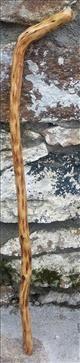 Authentic Irish Walking Sticks - Gorse 04