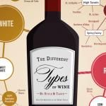 The Many Different Types of Wine (Infographic)