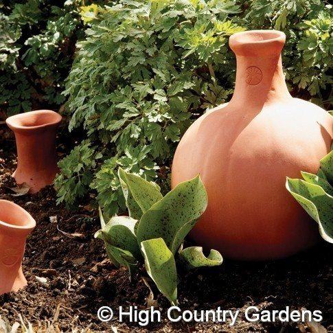 A watering pumpkin pot. Fill the pot with water and it gently seeps into the soil to be absorbed by the roots of surrounding perennials or vegetables.