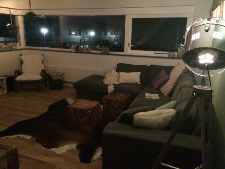 livingroom with cow skin rug and wooden floor