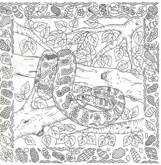 lizard and snake coloring pages - photo#39