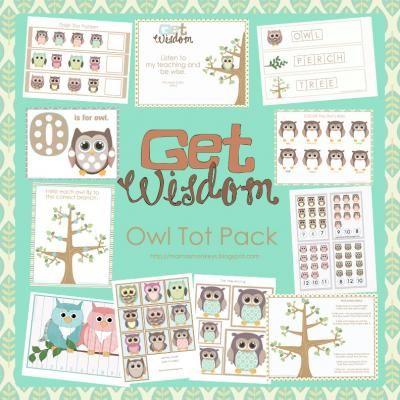 Owl Preschool Pack from LittleMonkeyPrintables on TeachersNotebook.com -  (27 pages)