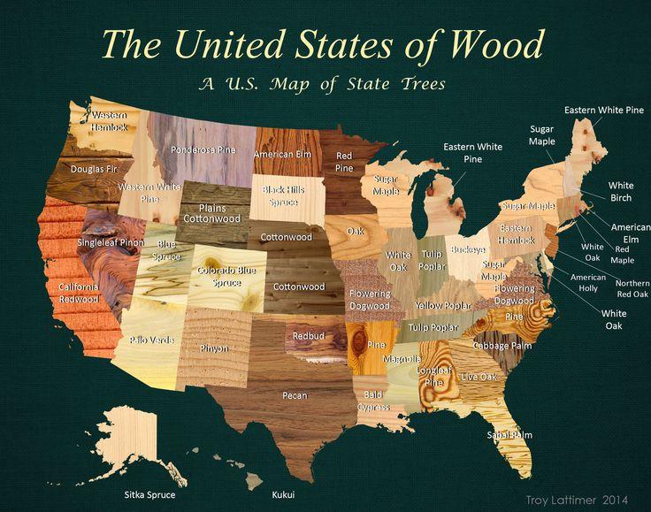 State Trees Wood Map Social Studies - Us jigsaw map wood