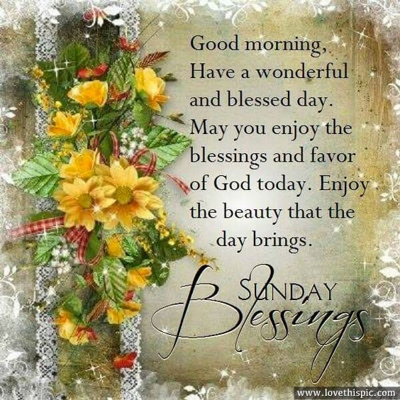 Good Morning, Sunday Blessings                                                                                                                                                                                 More