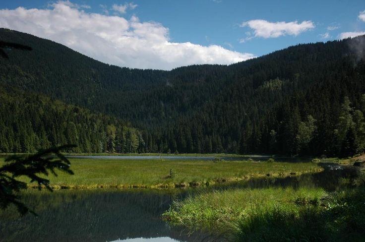 Kleine Arbersee (lake) - Lohberg, Germany