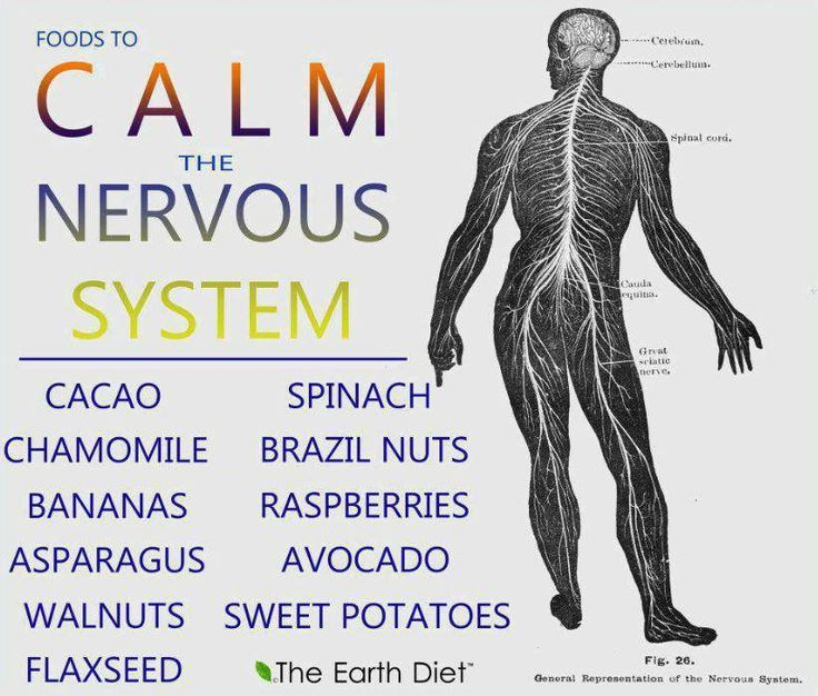 Best Foods To Calm The Nervous System