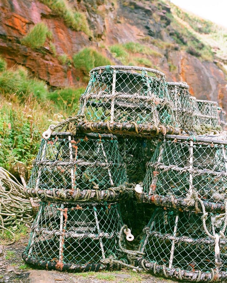 Lobster pots at Boscastle Harbour Cornwall. It's a lovely thing to see a harbour in use by local fishermen you can still hear them shouting and laughing even a mile out to sea- salts air is very good for the lungs!      #35mm #analog #shootfilm#filmisnotdead #landscape #fishing #lobsterpot #local #eatlocal #fresh #lobster #smallscalefishermen #fishermen #sustainable  #instagood #instalove  #filmphotography #필름 #フィルム #胶片 #필름사진 #フィルム写真#пленка #liveauthentic #cornwall #boscastle