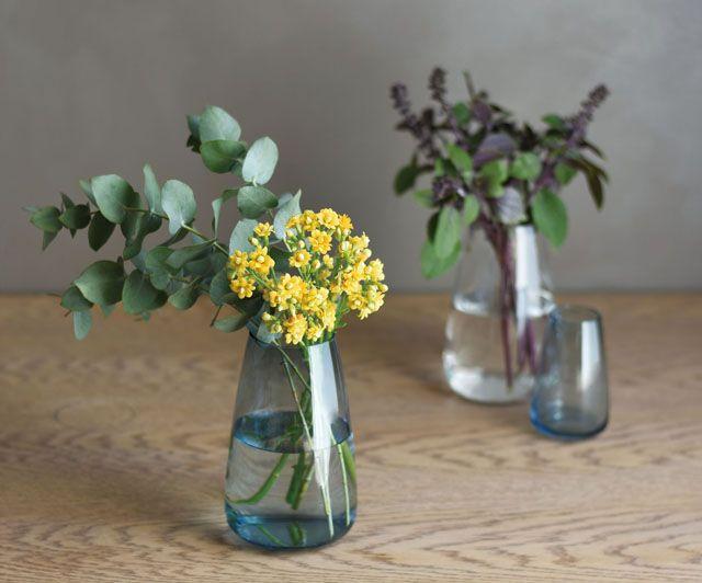 キント―から花器 AQUA CULTURE VASE(アクアカルチャーべース)新発売 - インテリア情報サイト