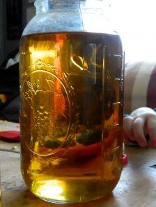Apple Cider Vinegar (Making the Mother)