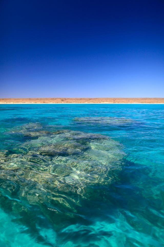✯ Exmouth, Western Australia