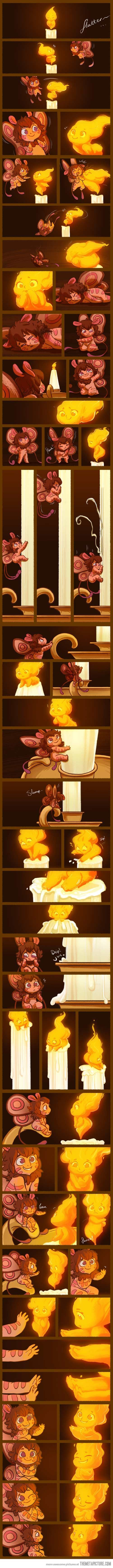 The Moth And The Flame - This is one of the cutest things I may have ever seen.