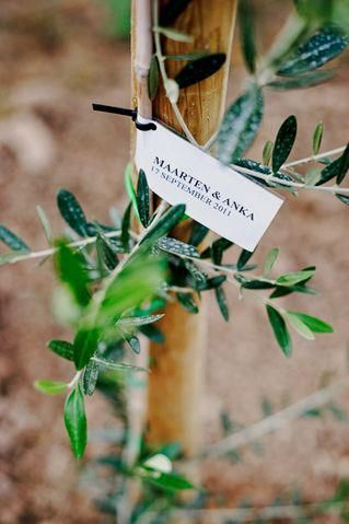 Amazing pics of Anka&Marten's wedding at Villa Campestri, by great Wesley Nulens Photography! — at Villa Campestri Olive Oil Resort.