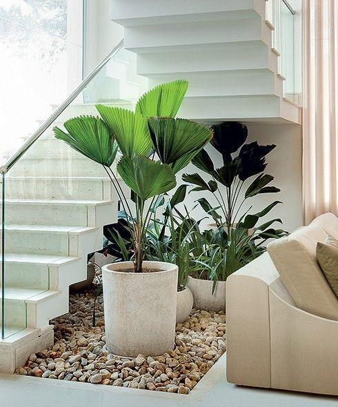 A reunião de licualas, pacovás e íris ficou bem instalada embaixo da escada neste recorte de 4 m² de jardim pensado pelo paisagista Gil Fialho. A forração de seixo rolado quebra a rigidez do piso cerâmico