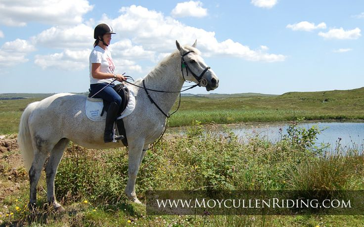 Trekking & Trial Rides with Moycullen Riding Centre