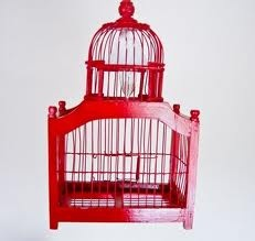 Another Red Bird Cage
