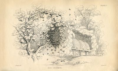 Instant Art Printable - Bees Swarming - Beehives - The Graphics Fairy #honeybee #skep