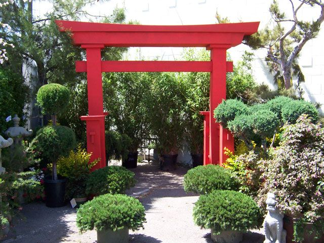 Jackson Shrub Pagoda Arch 12 2 Quot Wide Top Of Arch 10