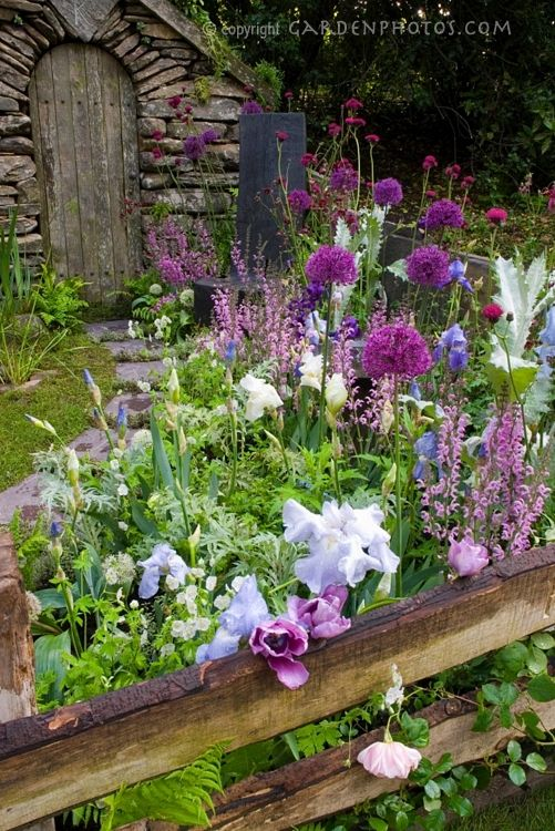 English cottage garden style. Pathway of bulb flowers leading to a wooden