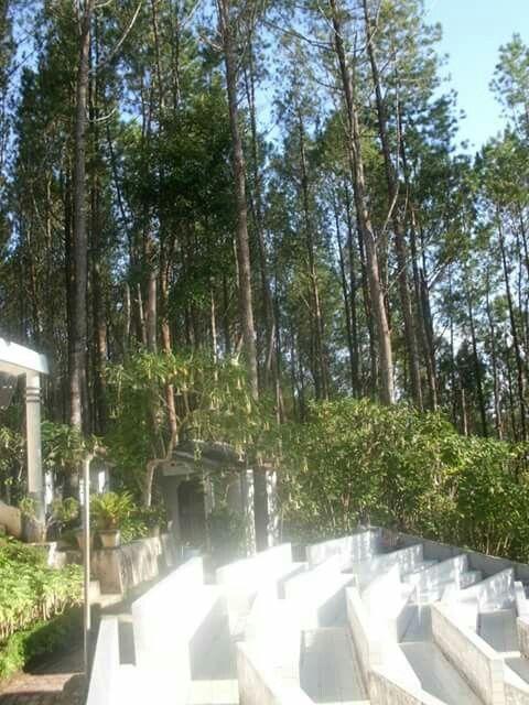 seat church of stone, to listen to sermons, Salib Kasih Monument, Indonesia