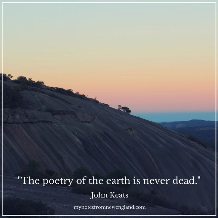 """The poetry of the earth is never dead."" John Keats"