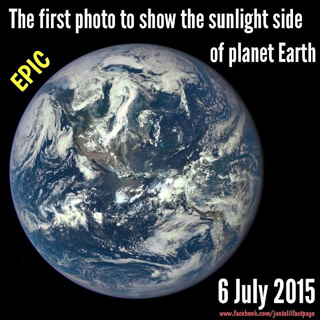 Just a lil fact!: Just a FULL Half earth fact! wait what?