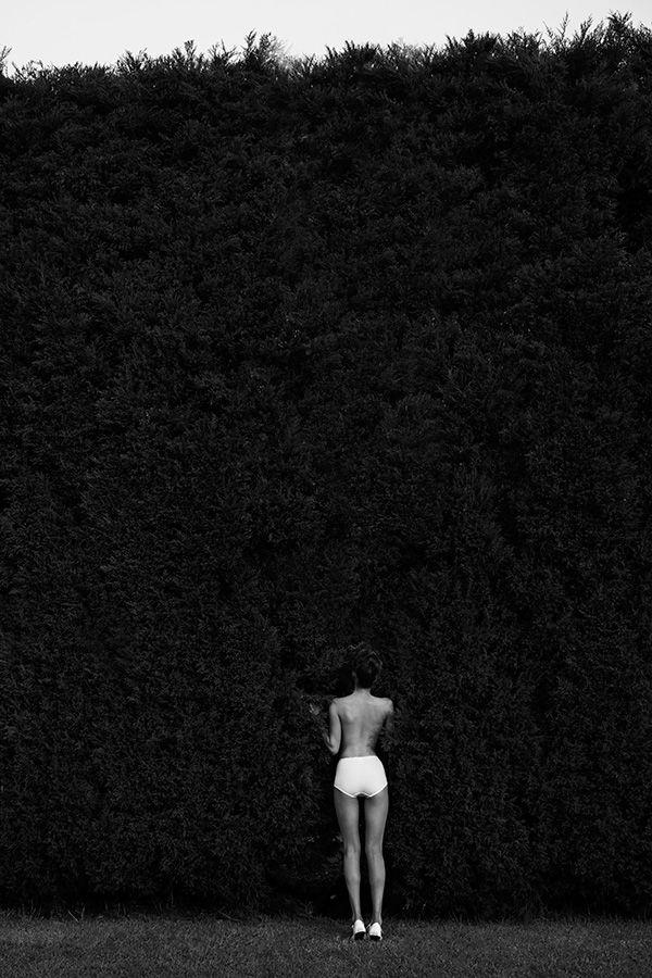 Lauren Kinsey Photography
