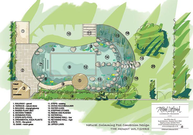 426 Best Images About Swim Pond On Pinterest