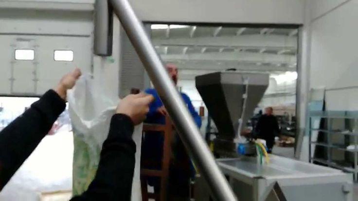 Helezonlu Besleyici Vidalı Konveyör - Product infeed system - hopper wit...