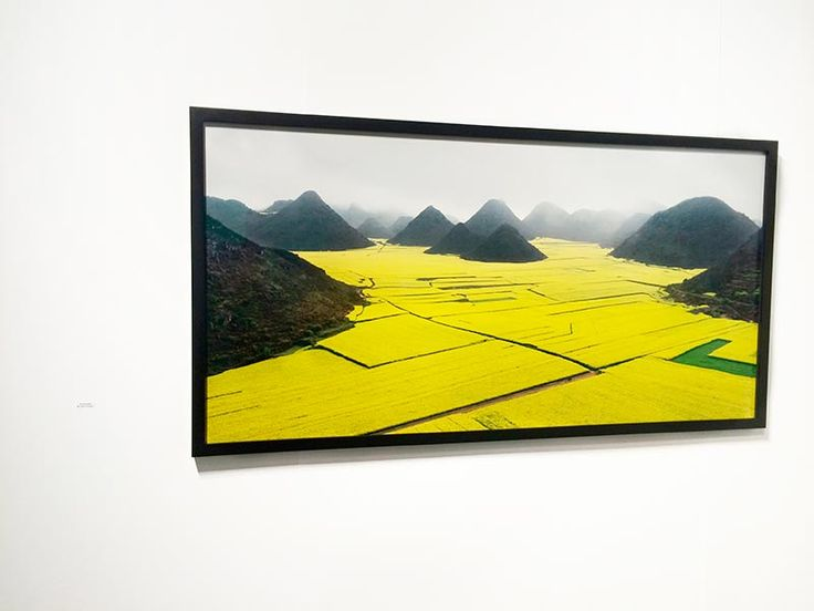 Best of Contemporary Art Photography   Discover Miami Art Basel   Favorites from The Print Atelier TPA curator Maude Arsenault   The Next Generation Art Gallery   Canola Fields, Luoping, Yunnan Province, China, 2012,  EDWARD BURTYNSKY, Nicholas Metivier Gallery