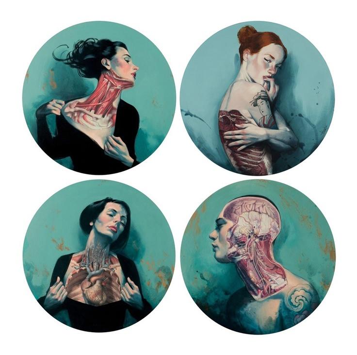 Fernando Vincente anatomical art.