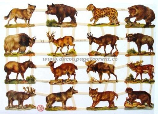 Vzor 36, Lesní zvířata