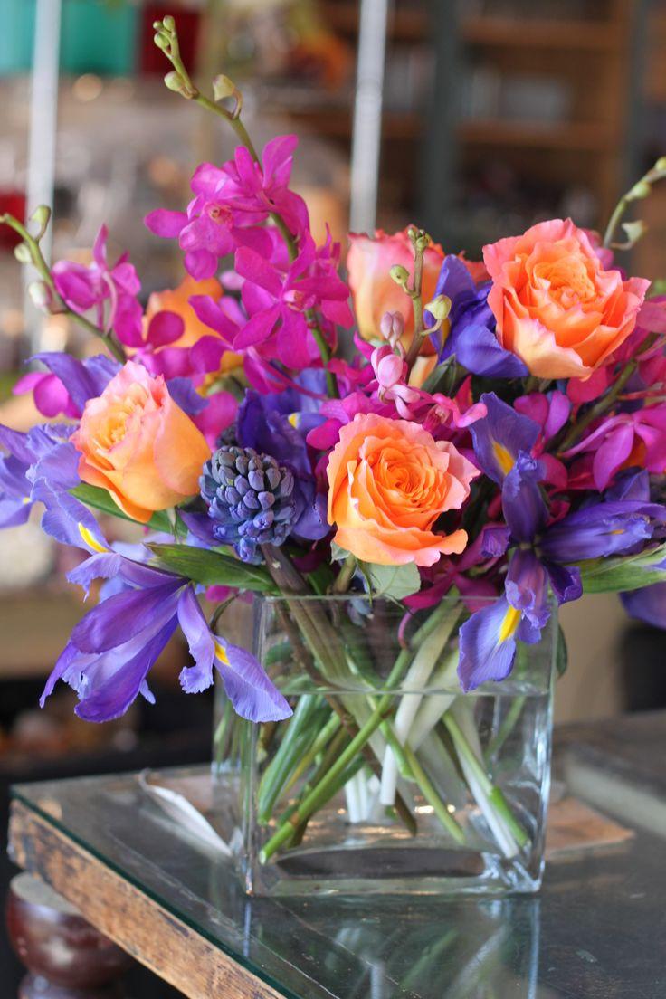 iris rose orchid hyacinth spring flowers