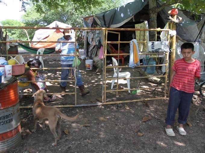5 tuits para entender la erradicación de la pobreza en México